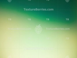 Abstract green gradient background
