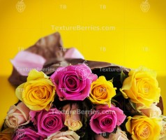 Bouquet of roses on yellow background
