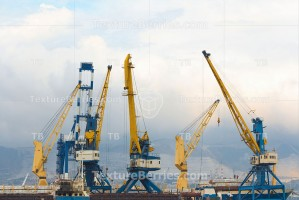 Harbor cranes in the port
