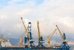 Harbor cranes in the sea port