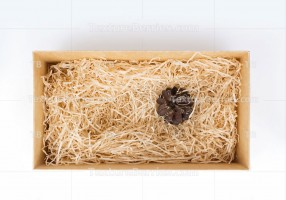 Open gift box with decorative straw and cone, top view