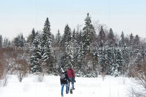 Tourists go to winter forest
